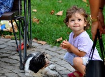 Baby Safety Around Dogs