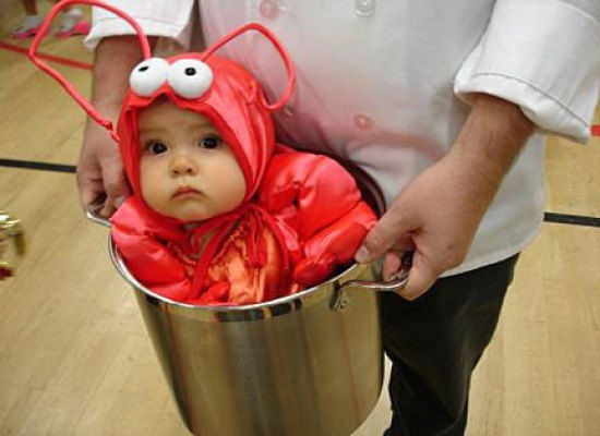 Top 10 Halloween Costume Ideas for Newborns