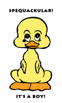 Spequackular Duck Baby Boy Greeting Card